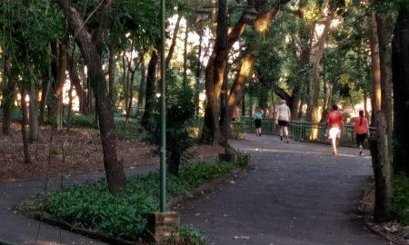 Parque De La Salud C Silvano Malini