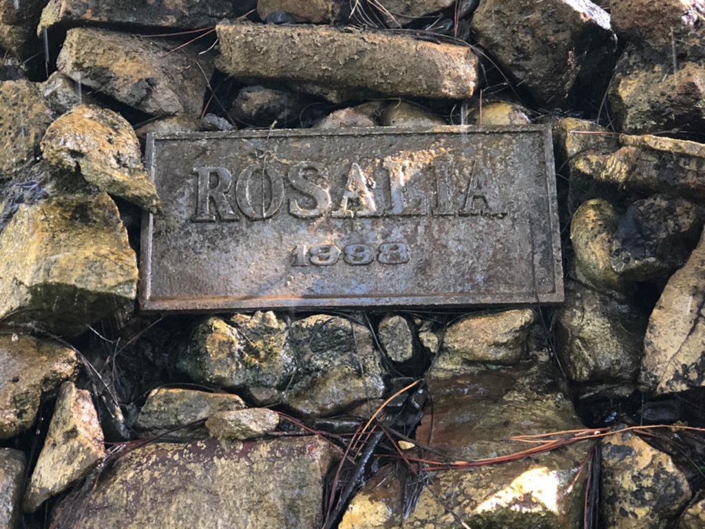 Rosalía - Placa De La Fuente Rosalia Del Sanatorio Italiano