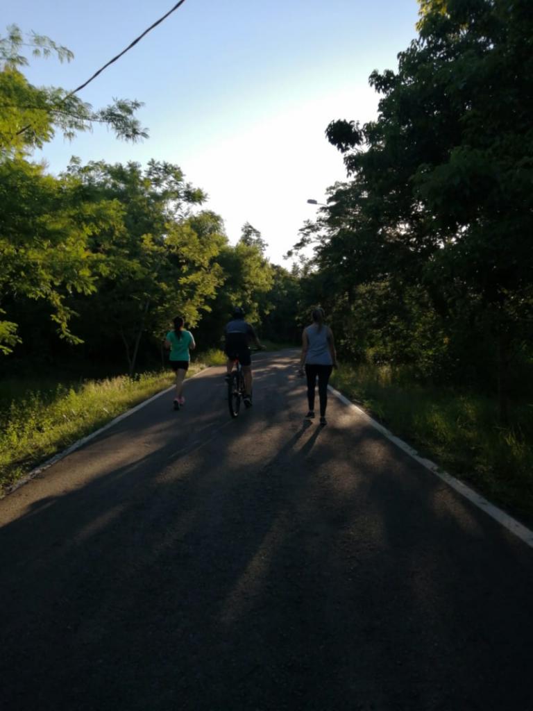 Parque-Actividades En El Parque Metropolitano