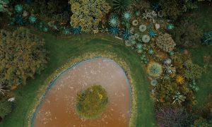 Jardin Botanico - Tesoro verde de Bogotá