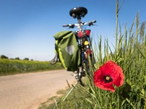 Itinerari Ciclabili Del Territorio