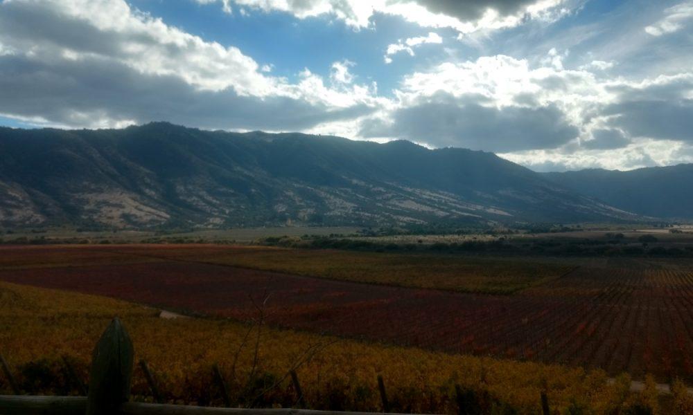 Valle colchagua