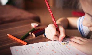 Montessori - Estudiante