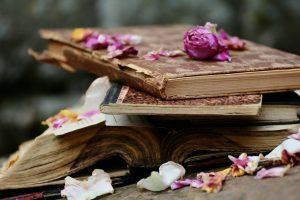 Alda Merini - Books