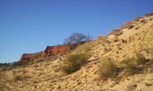 Toropí - Panorama