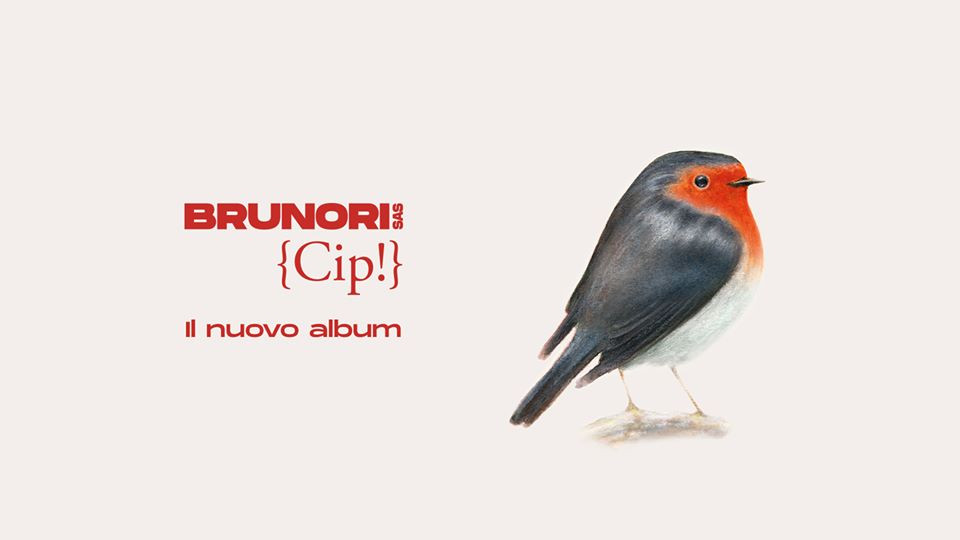 Brunori Cip