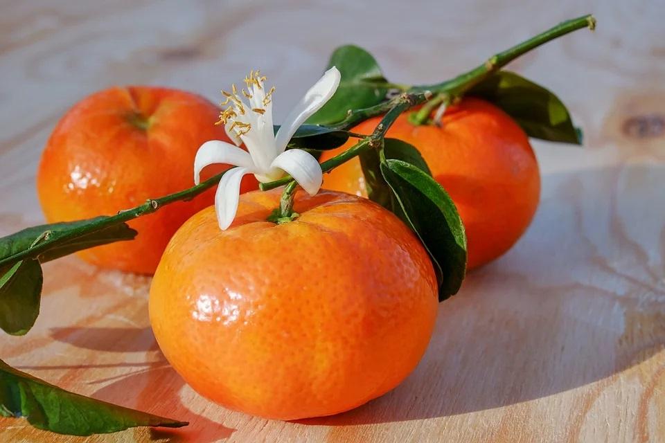 Liquirizia Clementine di calabria