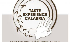 Taste Manifesto Lungo