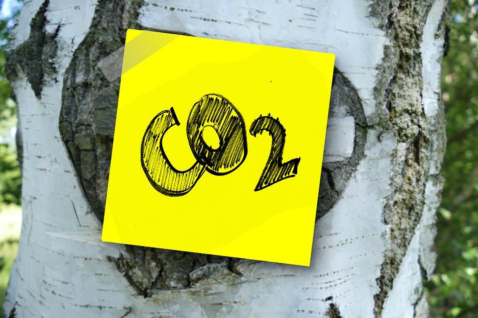 Eccellenza calabrese che non produce emissioni nell'atmosfera