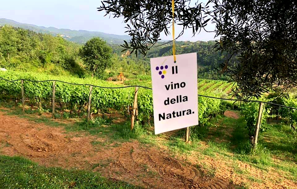 Vino Natura