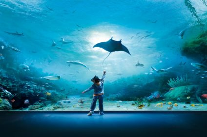 L'acquario piu grande d'Europa? Scopriamolo inseme | Acquario di genova