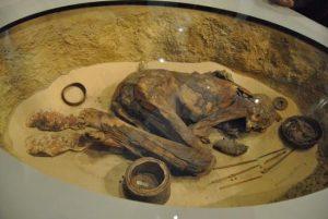 Una mummia predinastica conservata al museo egizio