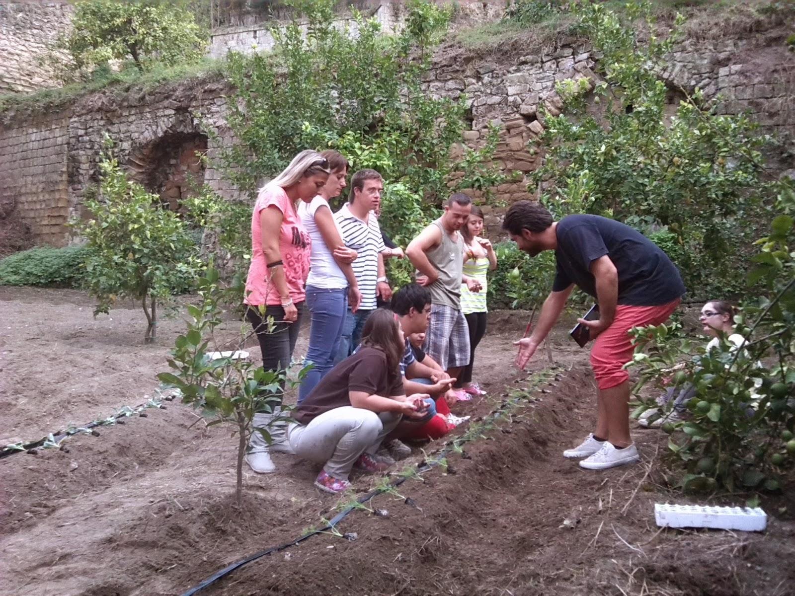 Orti Urbani: coltivare se stessi e riscoprire il sapore della terra