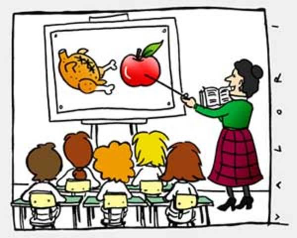 l'importanza dell'istruzione alimentare anche e soprattutto a scuola