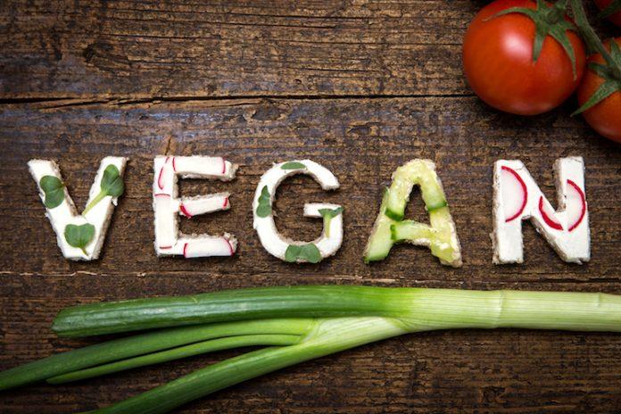 la moda dei vegani oggigiorno