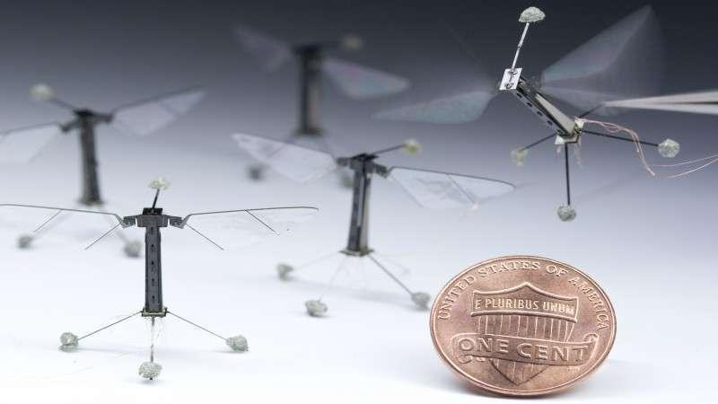 Droni e robot contro la diminuzione delle api