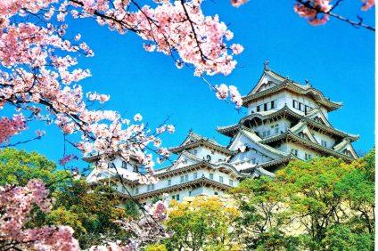 Il Giappone: una cultura millenaria e tanta originalità che hanno stregato gli Italiani