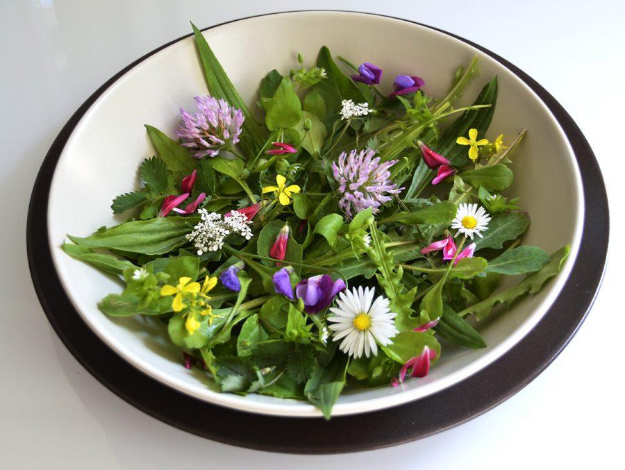 I fiori non solo danno un tocco di colore alle pietanze ma posseggono anche interessanti valori nutrizionali