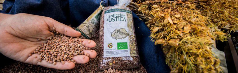 Le lenticchie sono l'oro della terra di Ustica