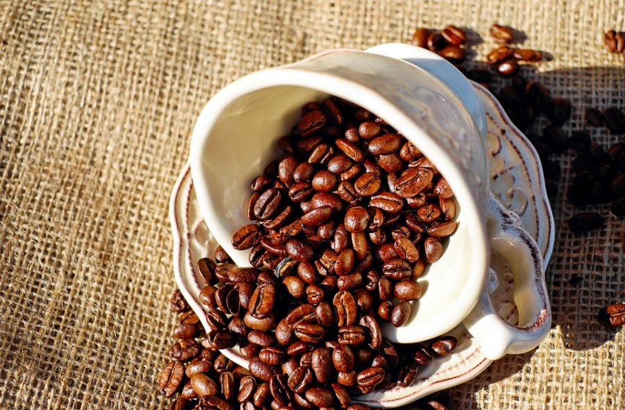 Trieste: tra caffè storici ed osmize