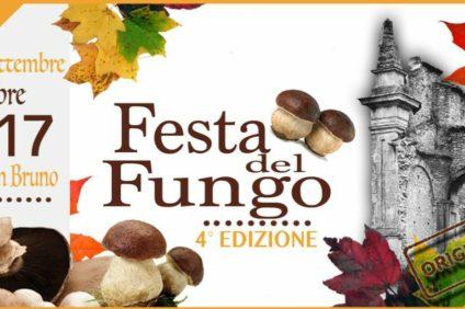 festa del fungo serra san bruno