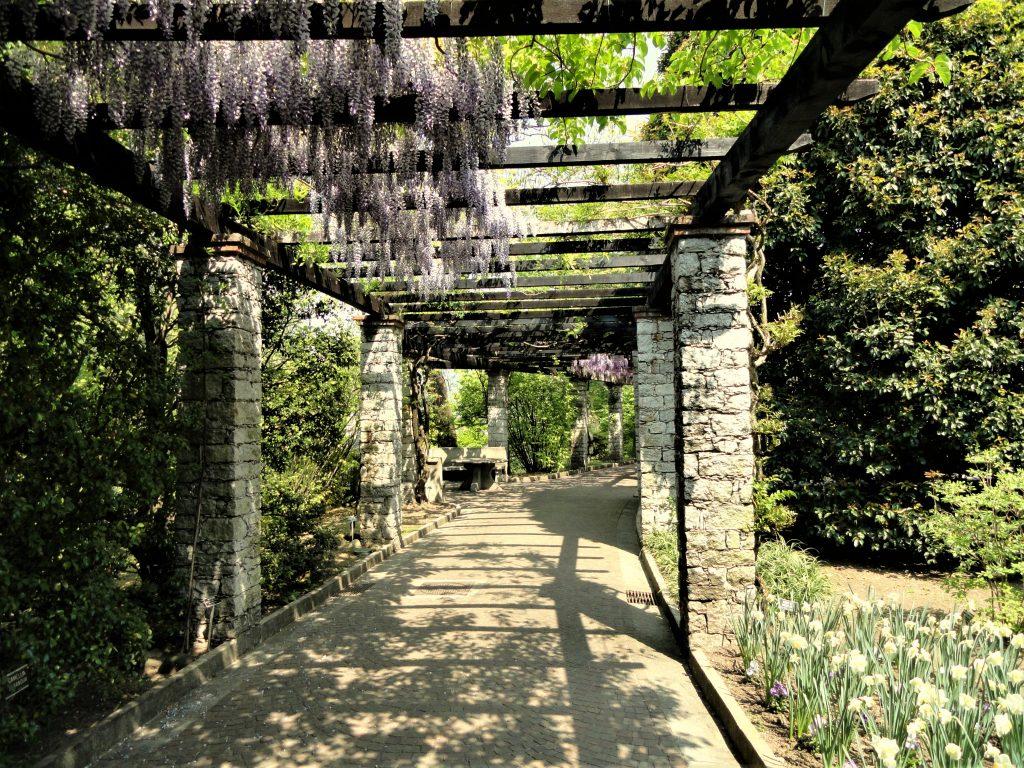 Uno dei viali del giardino di Villa Taranto