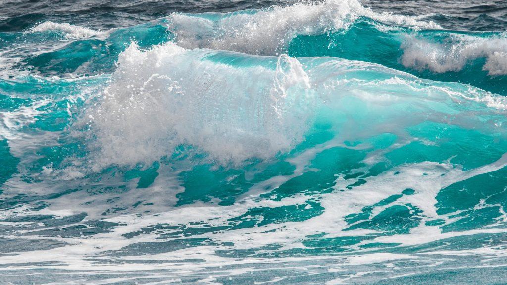 World Oceans Day - Giornata Mondiale degli oceani