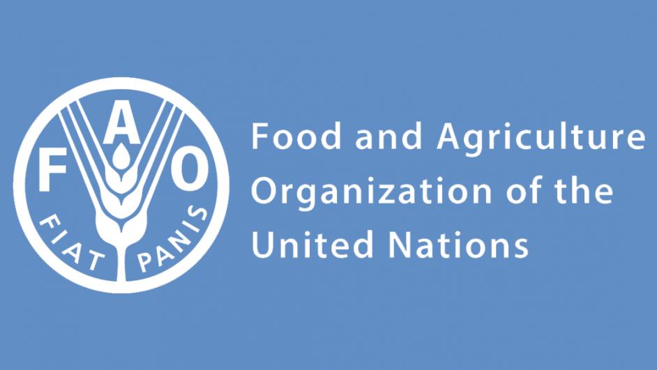 Logo FAO