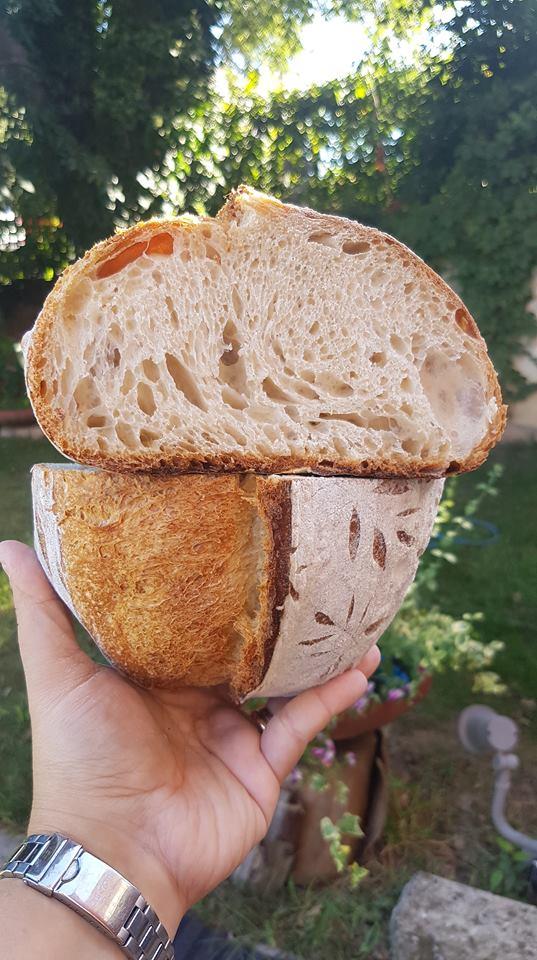 Pane autunno in fermento