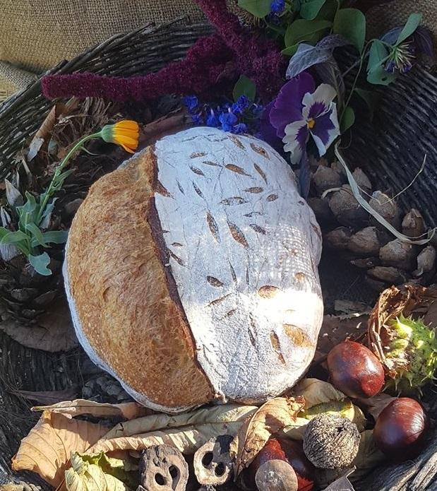 Pane autunno in fermento - pane pronto dopo la cottura