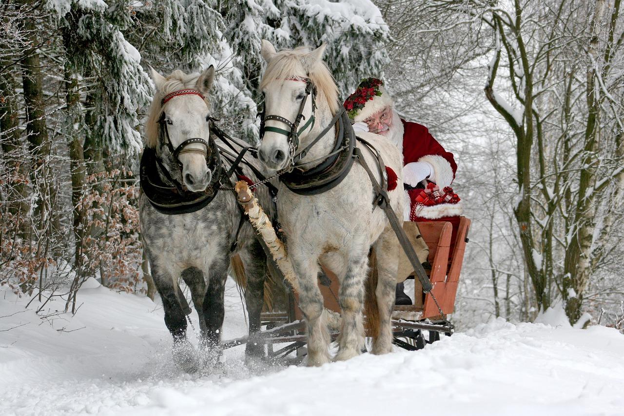 Slitta di Natale trainata dai cavalli