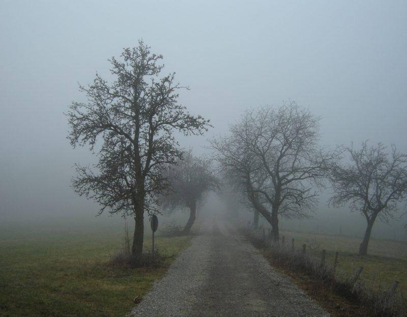 San Martino - nebbia (foto tratta da wikipedia)