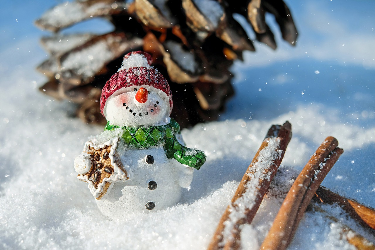 morbido pupazzo di neve con sciarpa, cappello e carota