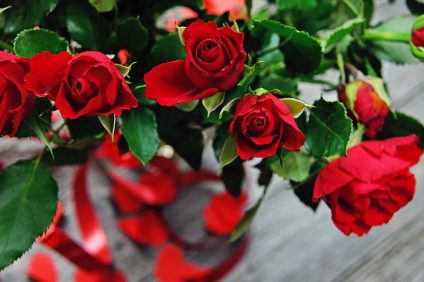 san valentino- rose care a San Valentino