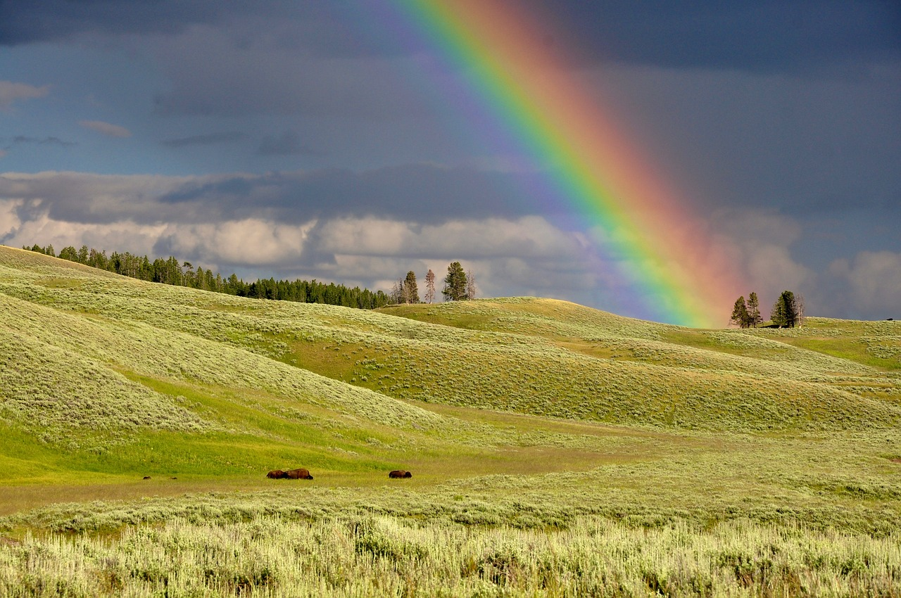 March - Landscape with green hills dominated by a rainbow