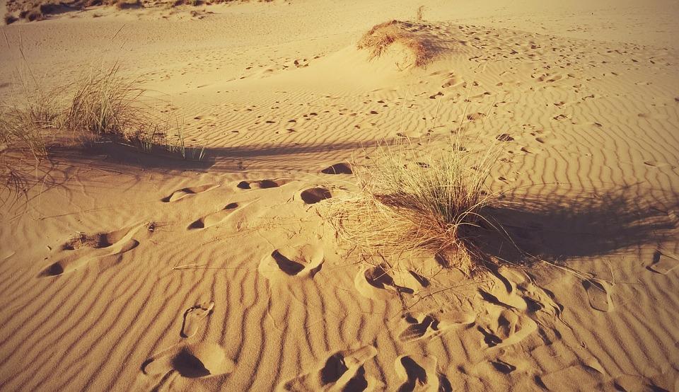 Torre dei Corsari. Desert on whose golden sand footprints are visible