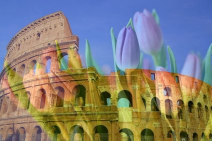 tulipark - image of the Colosseum against a background of tulips