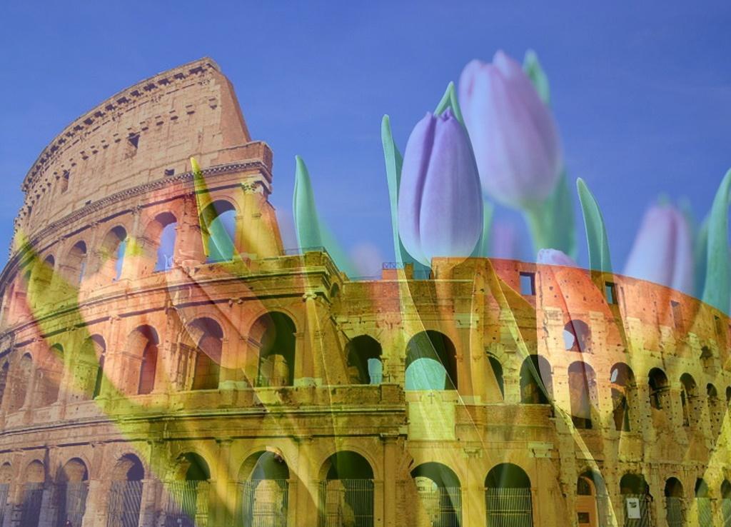 tulipark - immagine del Colosseo su sfondo di tulipani