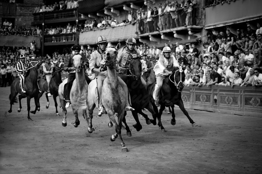 Siena. Palio di Siena in a black and white image with horse racing