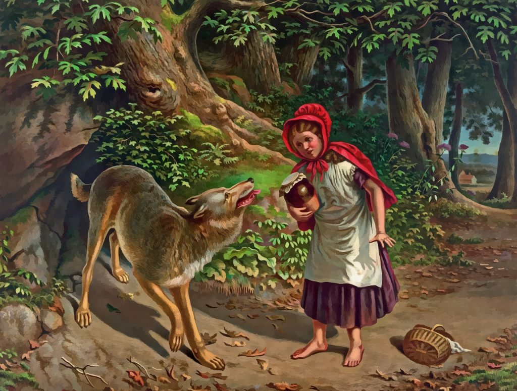 Fairy Tale Festival. Illustration with little red riding hood that meets the wolf in the woods