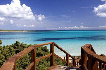 Spiaggia della Pelosa - panorama