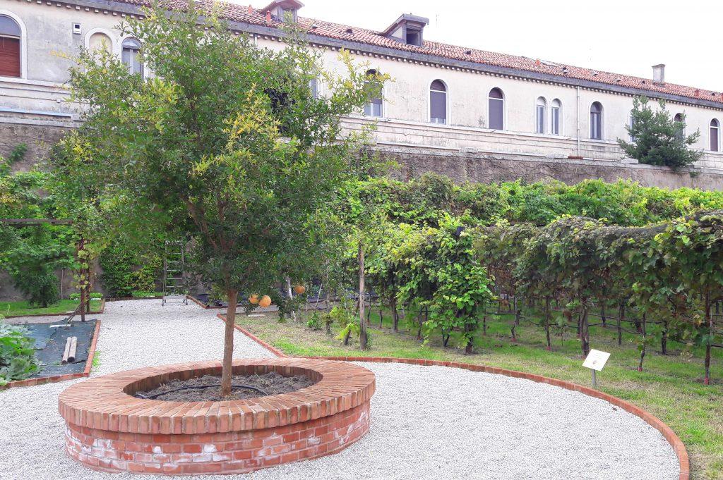 """l' """"albero della vita"""" nel giardino mistico dei padri Carmelitani Scalzi"""
