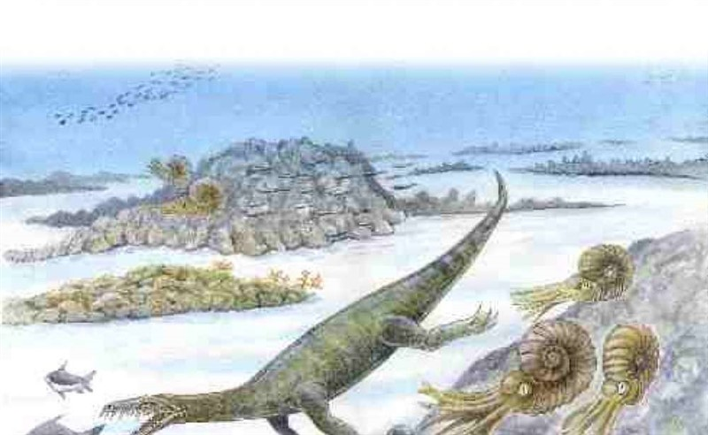 The Lariosaurus: a prehistoric animal
