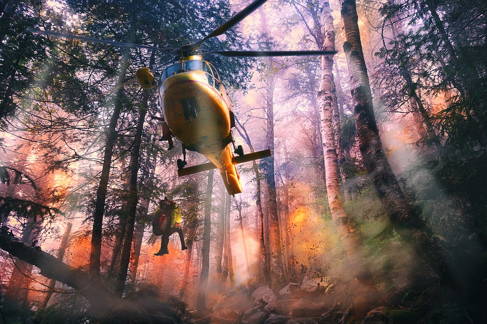 a helicopter in the woods