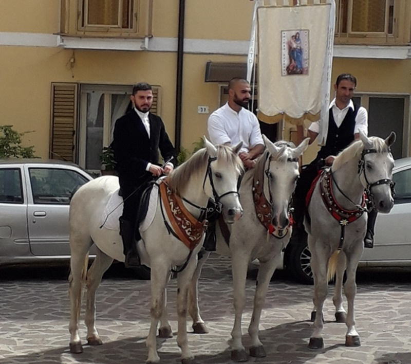 lodè - image of horses for the procession