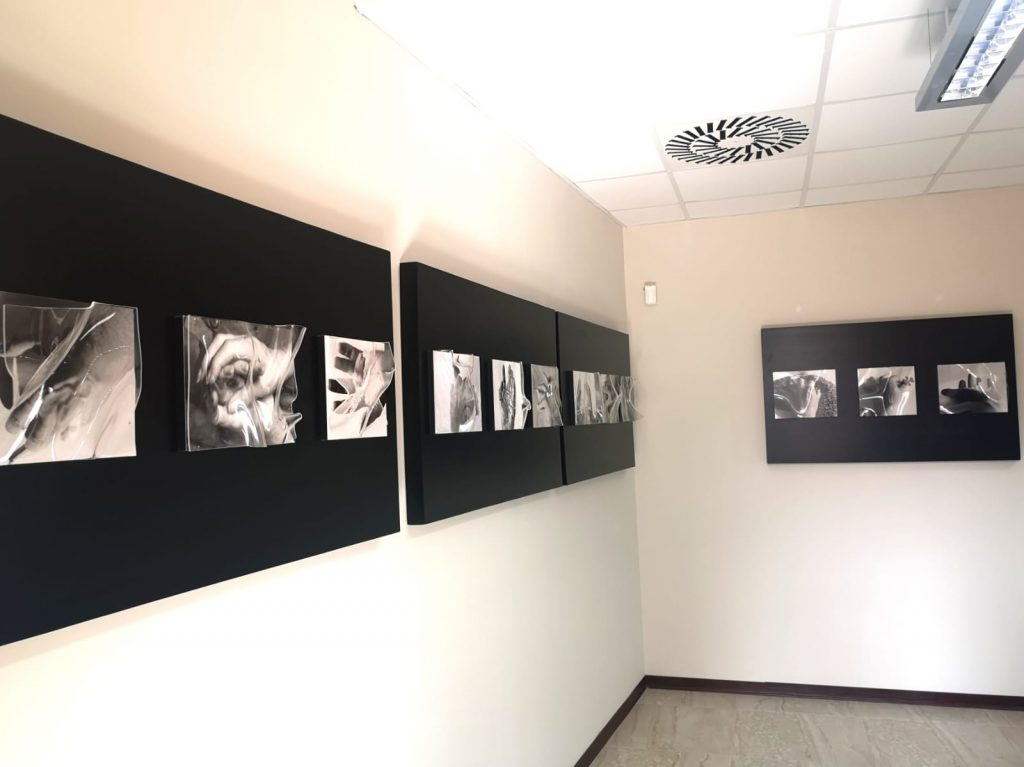 photographs exhibited on black panel at the Academy of Fine Arts of Catanzaro
