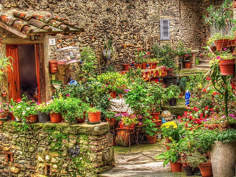 Flowering alleys in the village of Anghiari