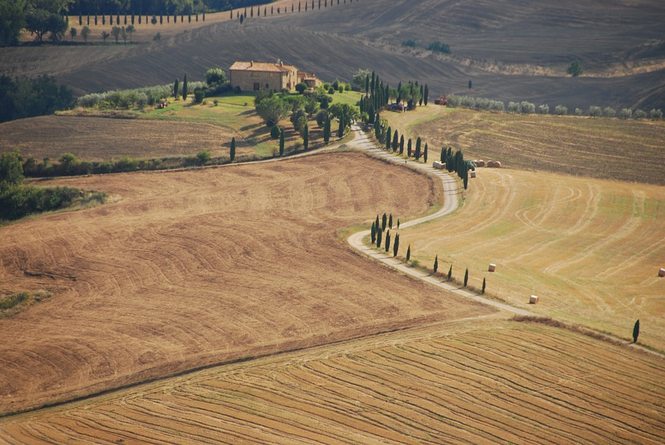 pienza in the val d'orcia