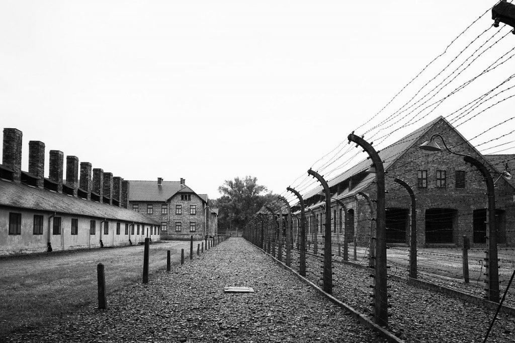 Remembrance Day 2020 January 27, Birkenau