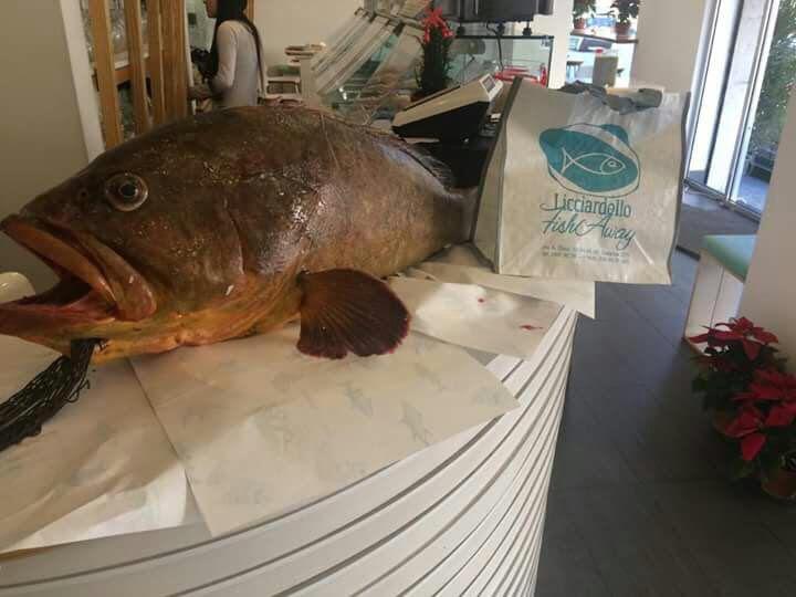 il Licciardello Fish Away